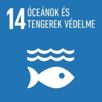 14 - Óceánok és tengerek védelme