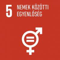 5 - Nemek közötti egyenlőség